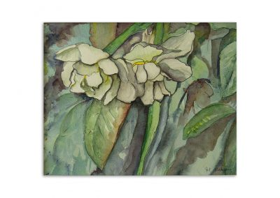 Monique Behean - White Flowers