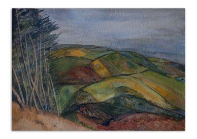 Monique Behean - Yorkshire Hills
