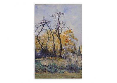 Monique Behean - Autumn Trees