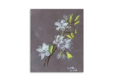 Greta Field - Flowers