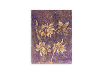 Judi George - Double Daffodils