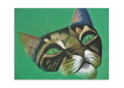Mary Horsfield - Cat
