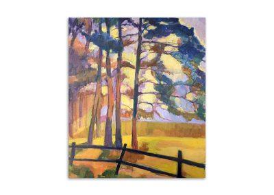Sue Loder - Sun through the trees